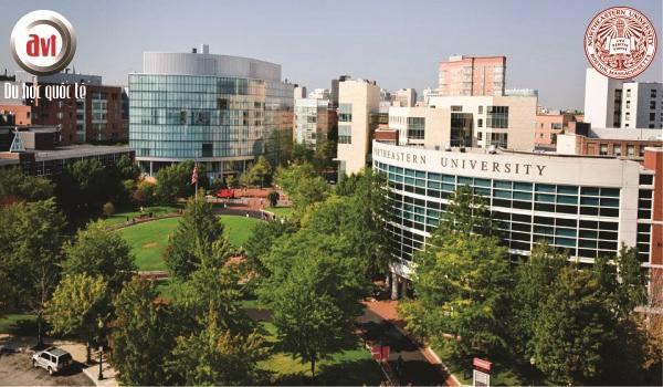 Gặp gỡ Đại học Northeastern – Top 50 trường đại học hàng đầu tại Mỹ
