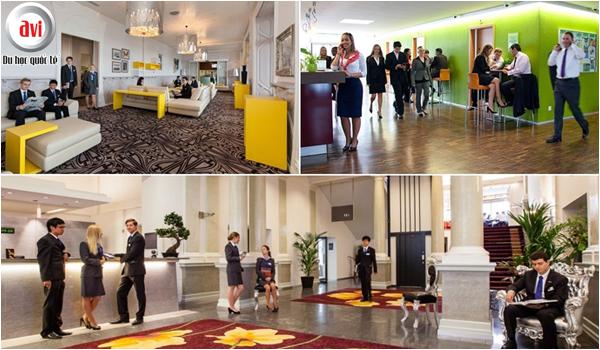 Cơ hội nghề nghiệp khi học ngành Quản trị Khách sạn tại Thụy Sĩ