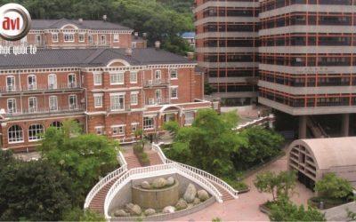 Trường Đại học Trung Hoa Hồng Kông – Thâm Quyến (CUHK)