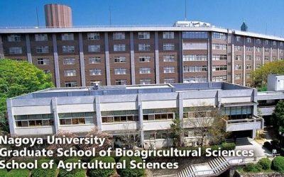 Trường ngoại ngữ quốc tế Nagoya