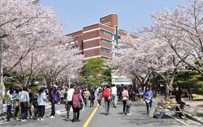 Hệ thống giáo dục Hàn Quốc
