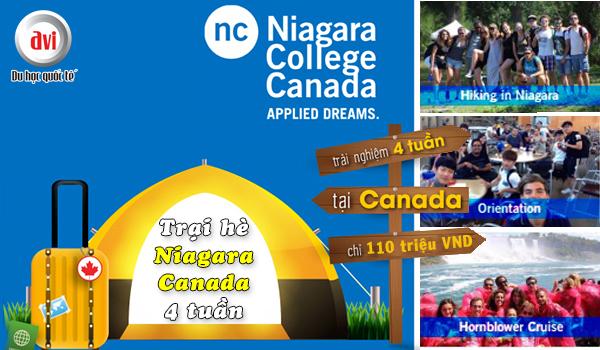 Du học hè Canada 2018, hành trình không thể bỏ lỡ cùng Niagara College