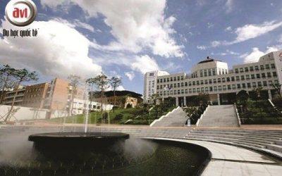 Buổi gặp gỡ Đại học Quốc gia ChonBuk – Hàn Quốc