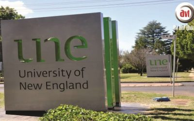 Trường Đại Học New England – University of New England