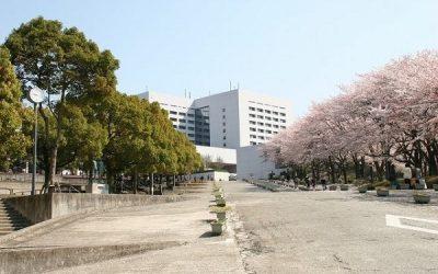 Lý do chọn Nhật Bản du học