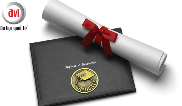 chứng chỉ (certificate) và bằng cấp (degree)