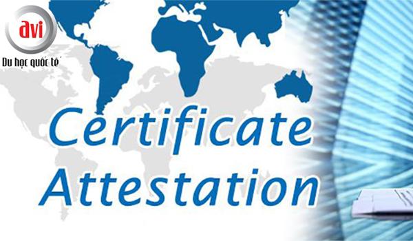 Chương trình cấp chứng chỉ (certificate)