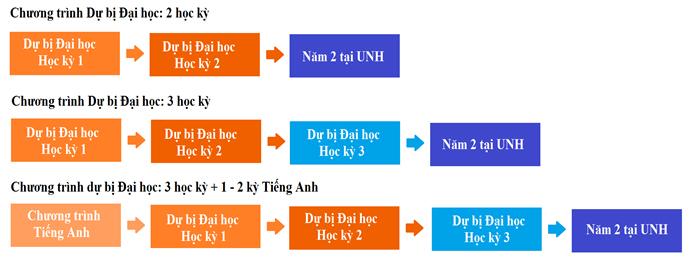 Cấu trúc chương trình dự bị đại học UNH
