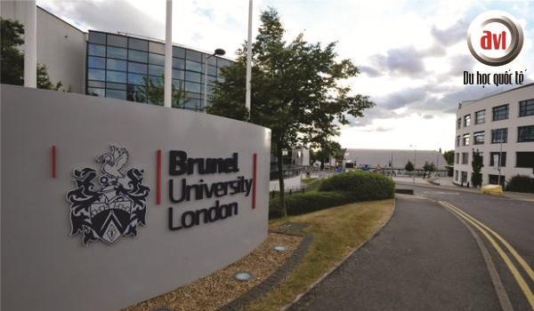 đại học brunel