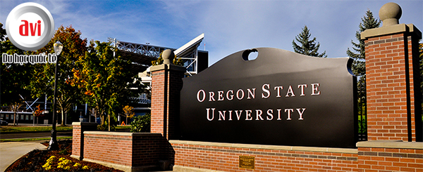 Đại học bang Oregon(Oregon State University - OSU)