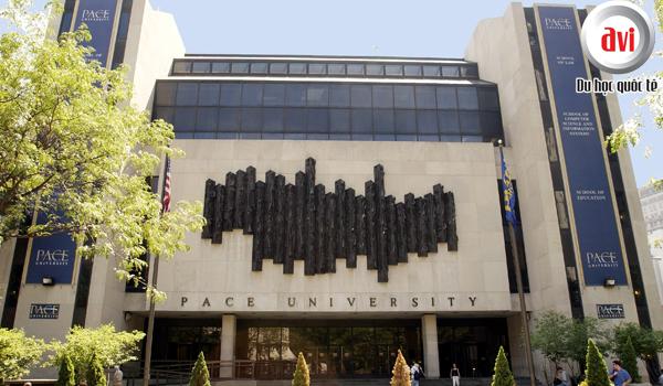 Đại học Pace (Pace University - PU)