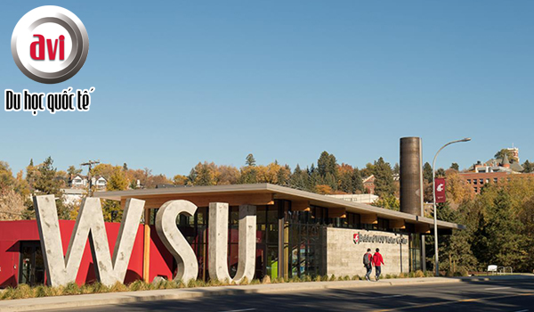 Trường đại học bang Washington - Washington State University