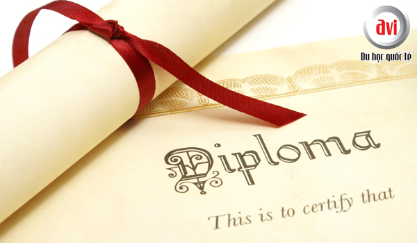 Những lý do học Diploma