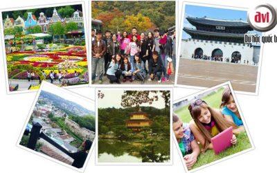 Chương trình du học hè 5 tuần  tại Đại học quốc gia Pusan – Hàn Quốc
