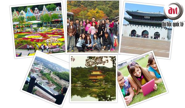 Du học hè Hàn Quốc kéo dài 5 tuần tại Hàn Quốc