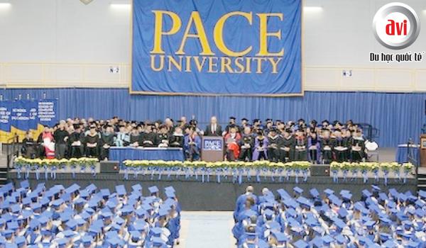 Học bổng đại học Pace, Mỹ