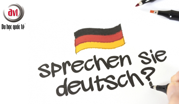 Tiếng Đức được sử dụng rộng rãi trong khu vực liên minh Châu Âu nói chung, các nước thành viên nói riêng