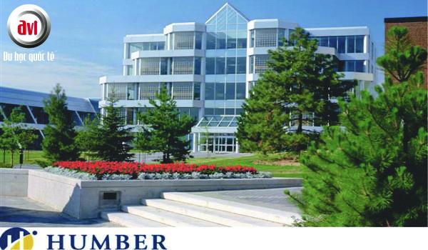 humber-college-avi