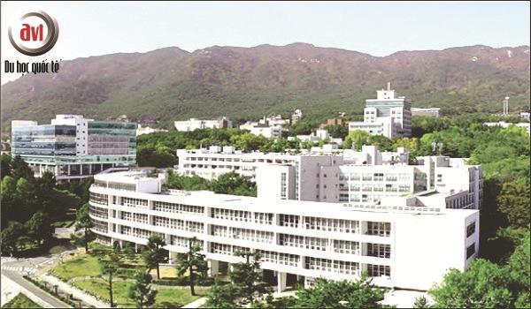 khuôn viên trường đại học pusan