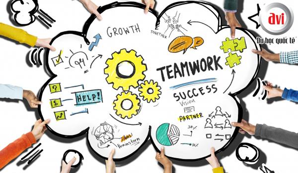 Thực hành kỹ năng làm việc nhóm