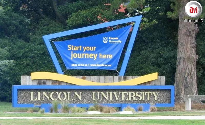lí do khiến Đại học Lincoln tỏa sáng