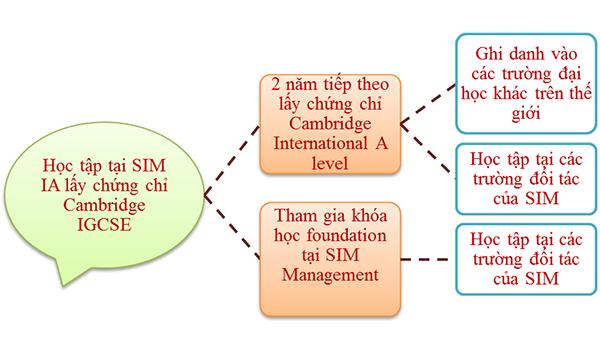 Lộ trình học tập tại SIM