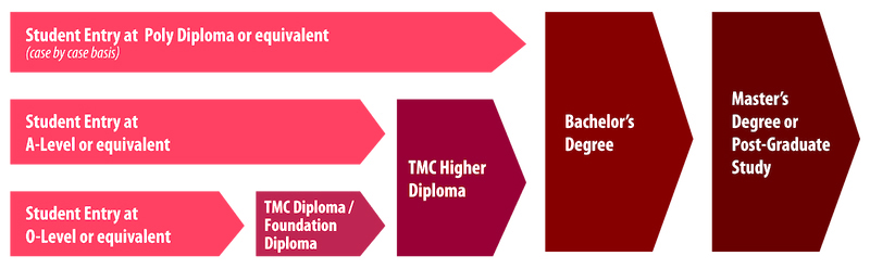 Lộ trình học tập tại TMC Academy