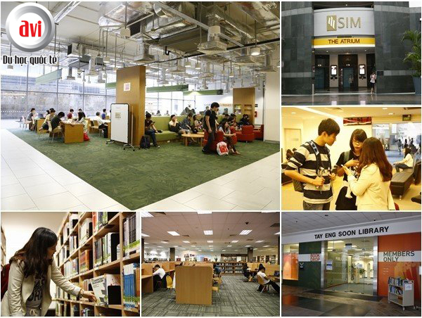 Học viện quản lý SIngapore - SIM với chương trình liên kết với đại học Buffalo, Mỹ