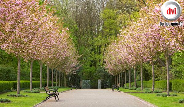 Mùa xuân ở Đức