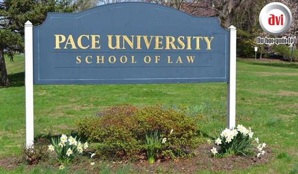 Pace University - Elisabeth Haub School of Law
