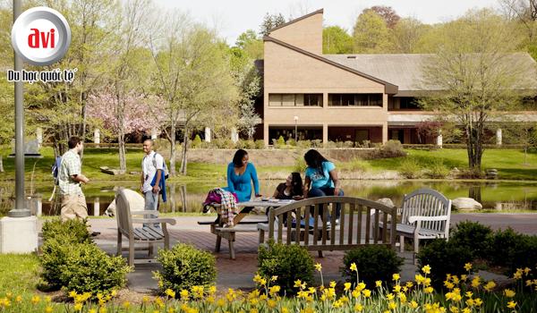 Khu học xá Pleasantville đại học Pace tại Westchester