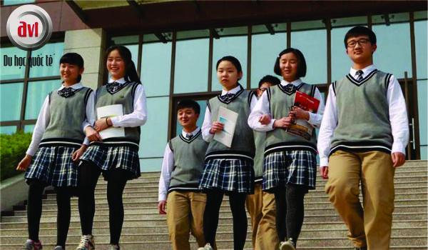 sinh viên trường đại học lâm nghiệp Nam kinh
