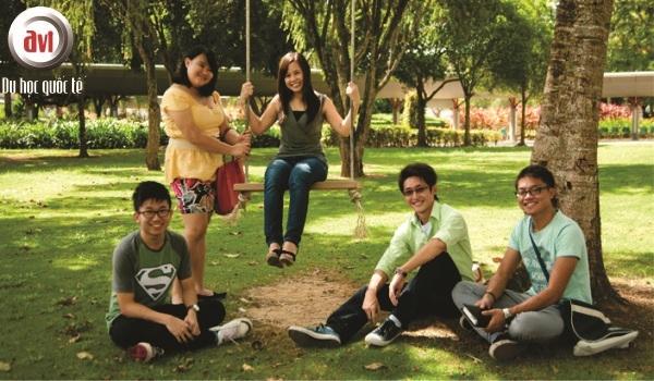 sinh viên trường curtin
