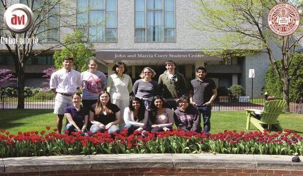 trường đại học northeastern