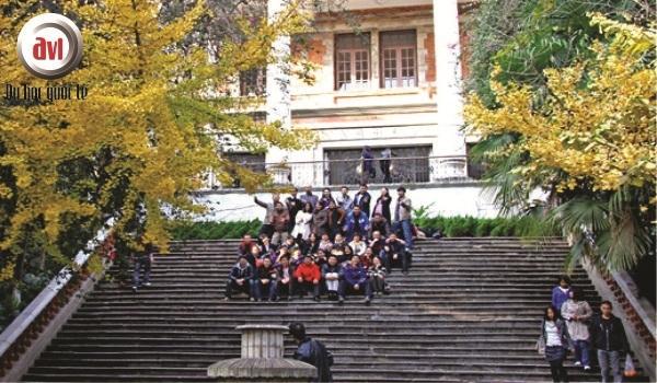 sinh viên đại học vân nam