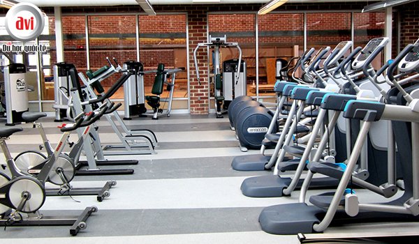 Northern College đề cao tinh thần thể dục thể thao của sinh viên
