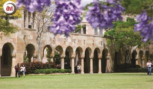 trường đại học queensland