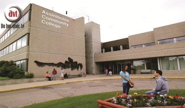 trường assiniboine