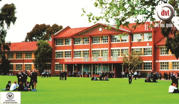 trường nam úc