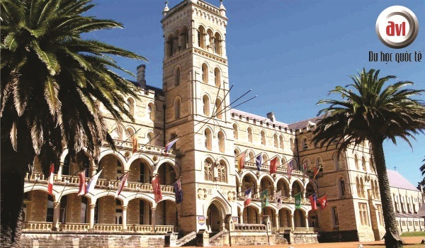 trường icms australia