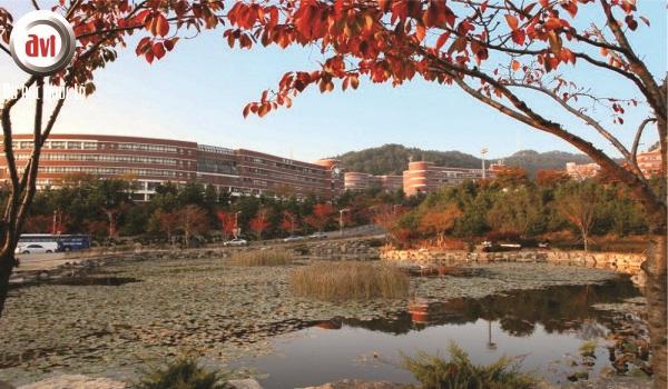trường silla korea