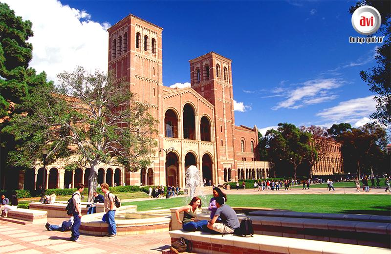 Trải nghiệm du học hè tại Đại học California- Los Angeles, Hoa kỳ