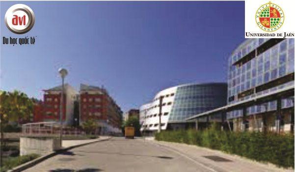 khuôn viên trường đại học jaen
