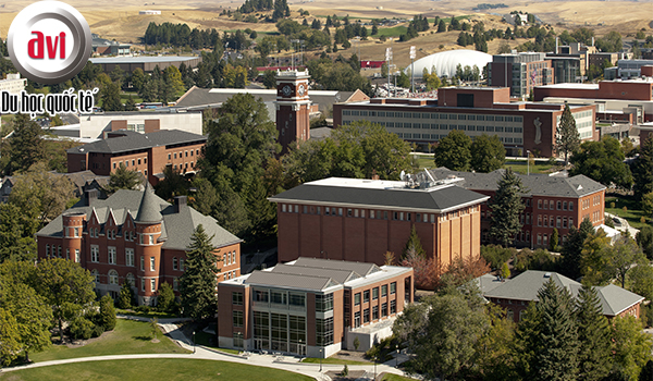 cơ sở chính Washington State University - Pullman