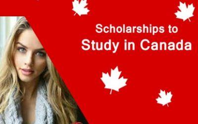 Kinh nghiệm săn học bổng du học Canada
